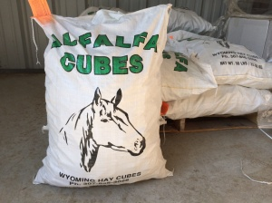 50 lb. Bag of Alfalfa Cubes